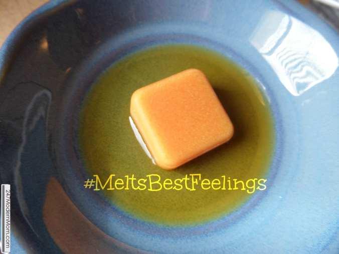 Shop #CollectiveBias #MeltsBestFeelings Easy To Use
