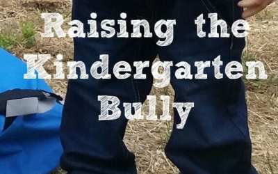 Raising the Kindergarten Bully: An Apology To The Parents of His Victims