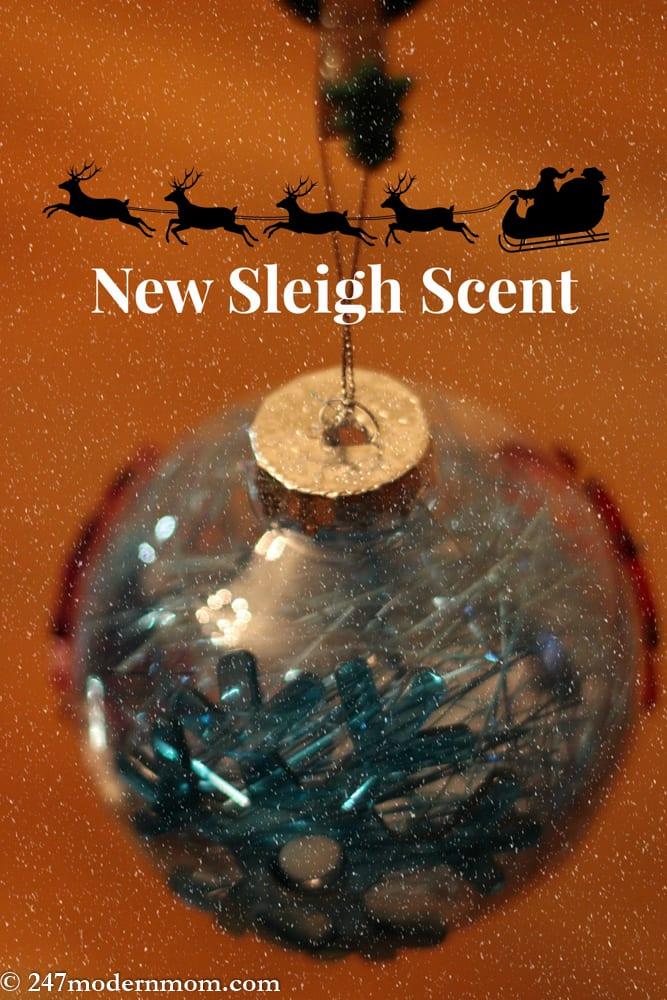 Gift Ideas for Santa-14