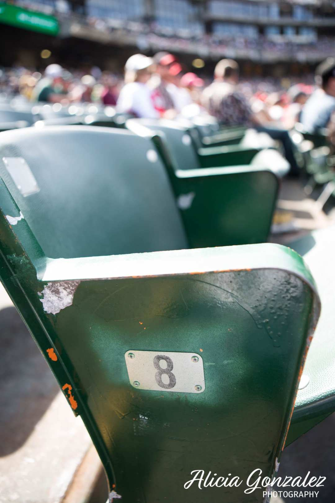 Oakland Athletics celebrates Cesar Chavez Day seats