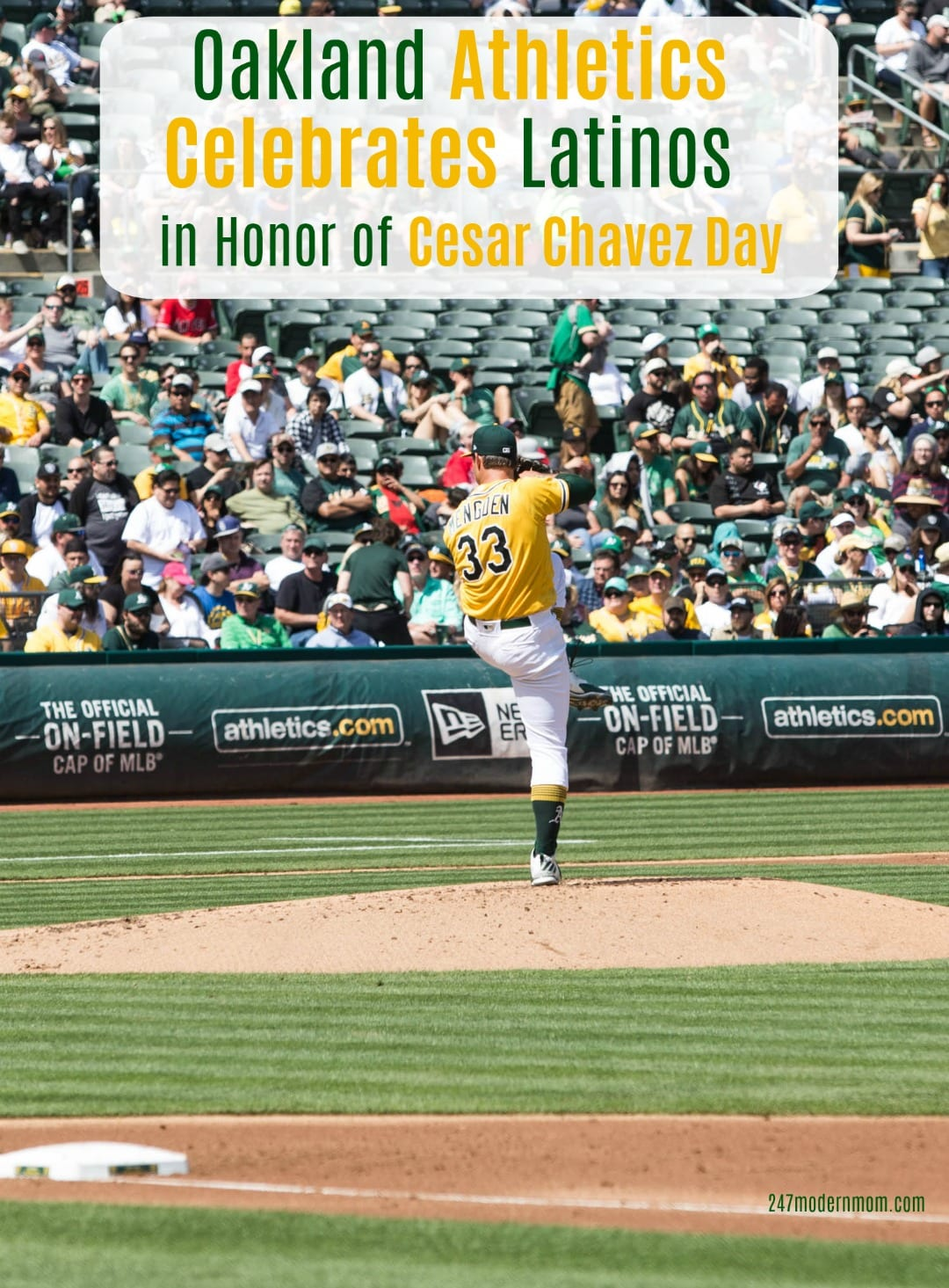 Oakland Athletics Celebrates Hero Image