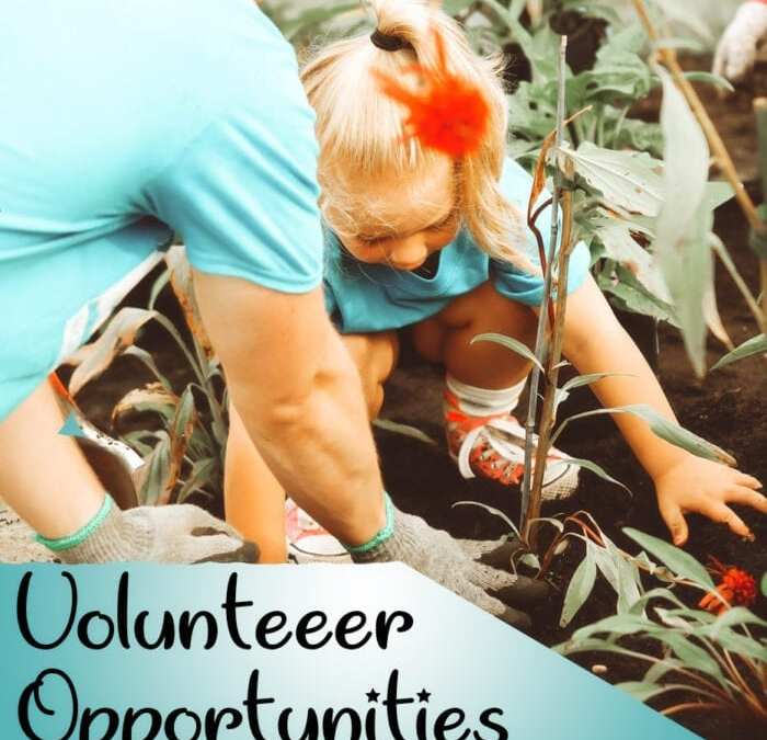 Volunteer Opportunities for Kids & How to Find Them