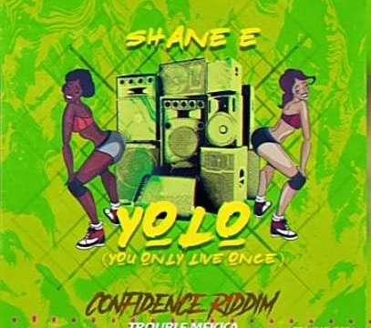 Shane-E-Yolo