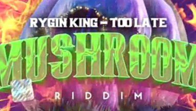 Music: Rygin King - Come To Toronto ft  Trevor Jackson