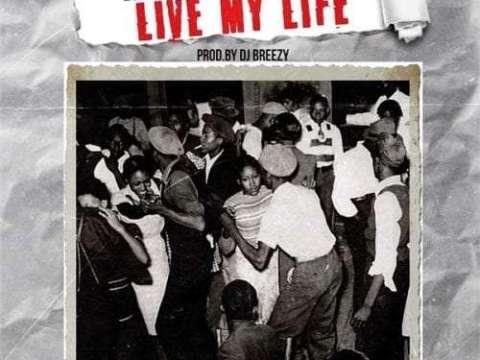 DJ-Breezy-Live-My-Life-cover