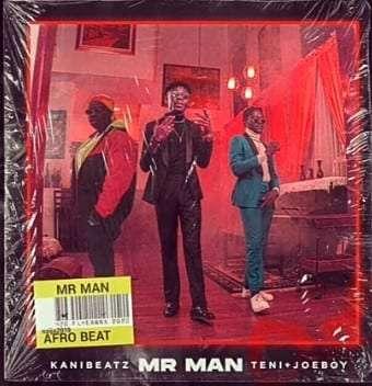 KaniBeatz-ft-Teni-Joeboy-Mr-Man-MP3