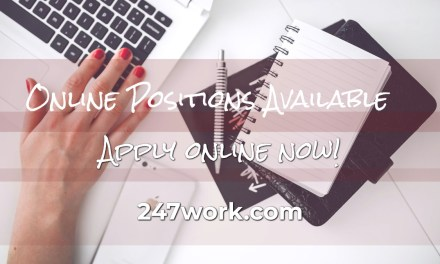 Accountant Part-Time, 100% Remote Job NV…