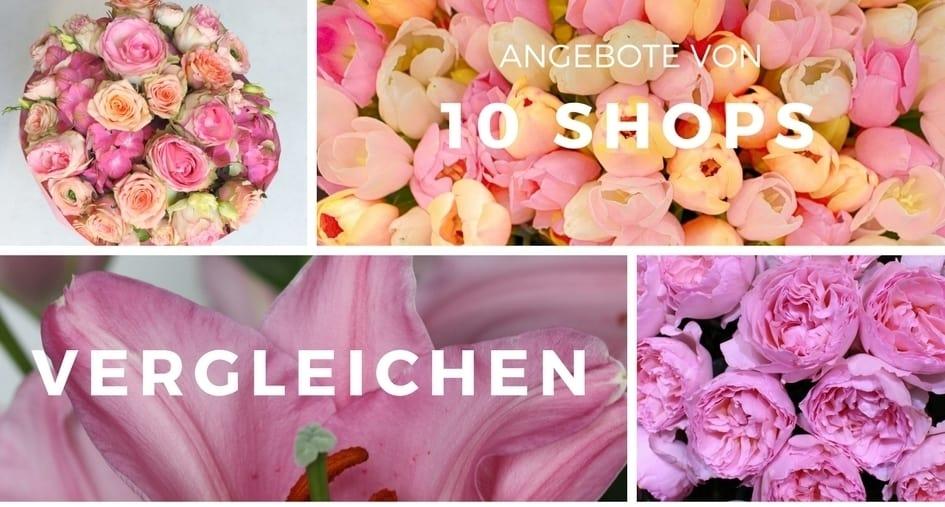 10 SHOPS  Blumenversand Verlgleich  225 Blumen ANGEBOTE
