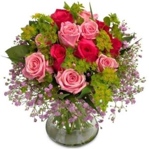 Blumenversand 24blooms  Blumen verschicken  10 Shops