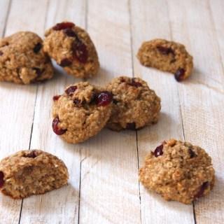 Cranberry Coconut Quinoa Breakfast Cookies (dairy free)