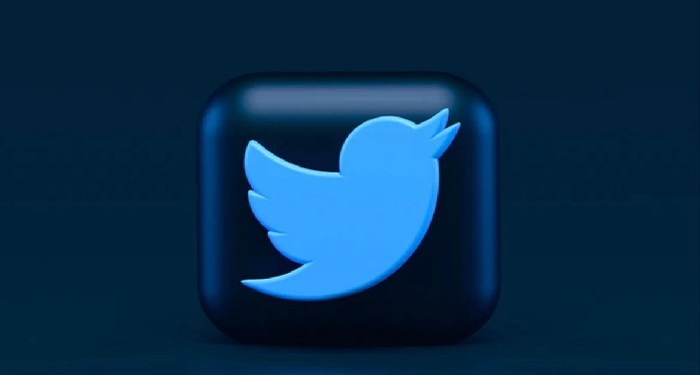 Twitter launches its Blue paid subscription service