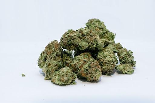 Cannabis Might Block Coronavirus Infection, New Study Shows