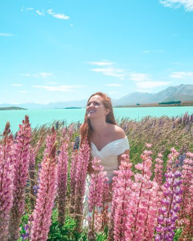 lupins lake tekapo New Zealand South Island must see
