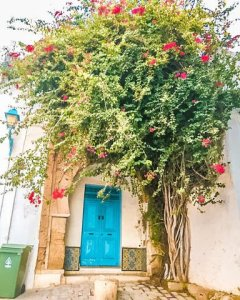 sidi bou said doorways