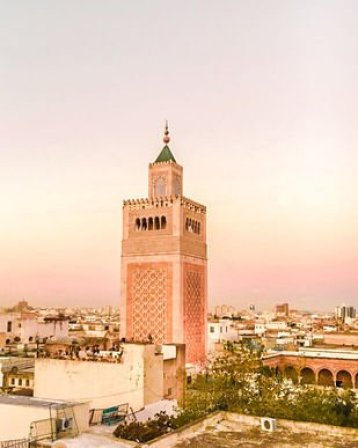 tunis medina rooftop view