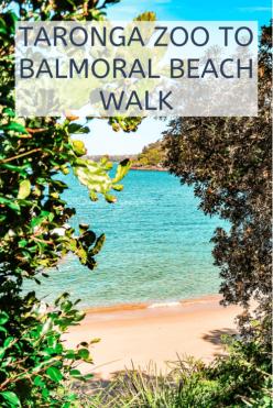 Taronga zoo to balmoral beach walk