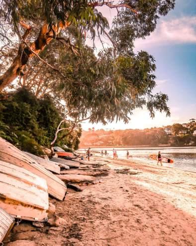 forty baskets beach Sydney