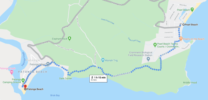 pearl beach to Patonga walk