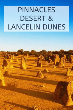 pinnacles desert & Lancelin sand dunes