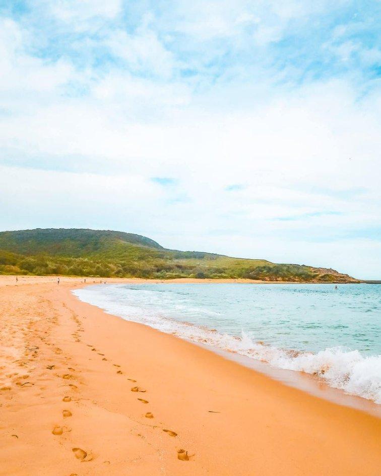 putty beach bouddi national park