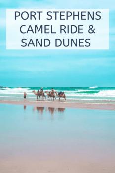 PORT STEPHENS CAMEL RIDE & SAND DUNES