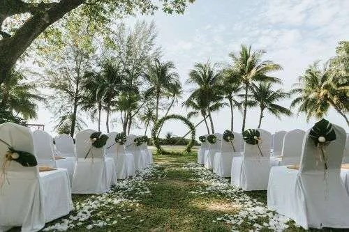 wedding chairs rentals in Miami