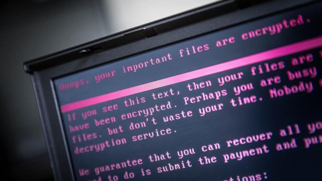 Europol: 'Gijzelsoftware blijft grootste oorzaak van internetfraude'