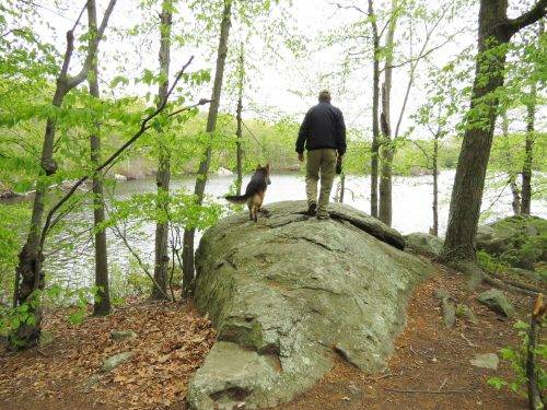 5-13-17 Lincoln Woods State Park (96)