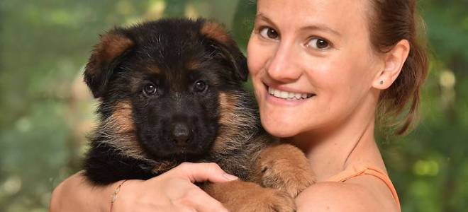New Families for Q-litter Pepe X Ava