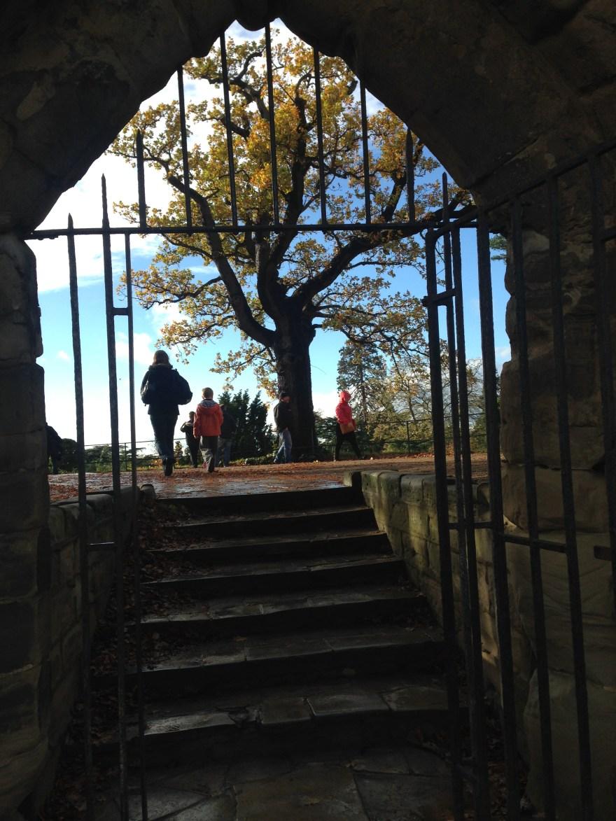 華威城堡Warwick Castle一日遊(含大量自嗨照片,慎讀!) – 24 mius UK 欖仁旅誌