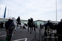 Horses are used to transport AfD members through counter demonstration.