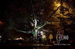 Activists on tree.