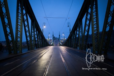 Empty Freedom Bridge short after sunset.