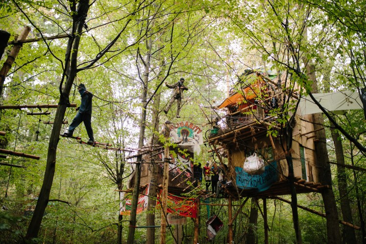 hambacherforst 20180913 14 - [Picture Gallery] Ongoing Resistance to Eviction of Hambach Forest Occupation