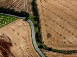 danmark mark landbrug