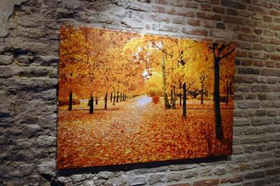 canvas 2cm 30x80 cm