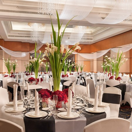 Eastwood Richmonde Hotel - Social Function Ballroom