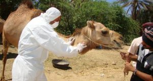 mers treatment