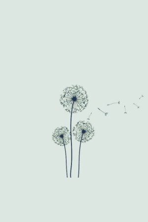 drawings simple flower drawing dandelion flowers tattoo easy notes imagens line fofas obviously its lion sad 5s iphone dark england