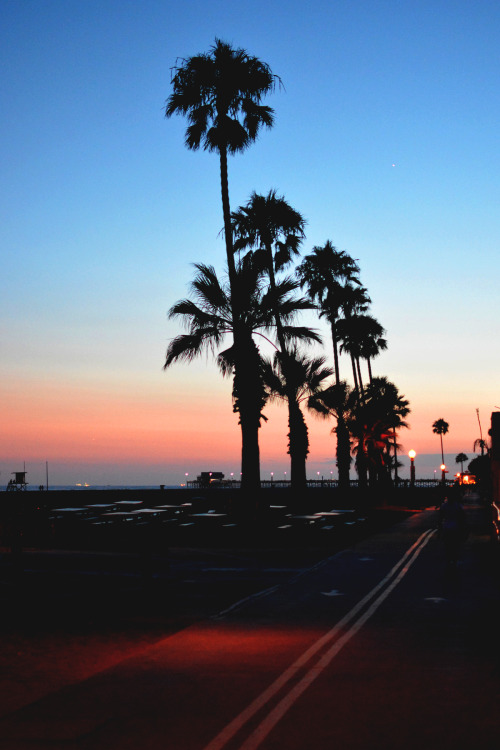 Cute Hipster Iphone Wallpaper Summer Sunset Miami Miamivibe