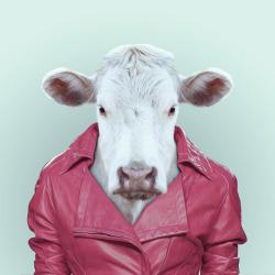 COW por Yago Partal para ZOO RETRATOS