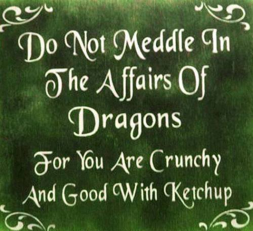 Lol Funny Religion Green Joke Witch Dragon Witchcraft Dragons Mythology Paganism The Craft Wiccan Pagan Lizard Wicca Crunchy Witchery Neo Pagan Pagan Jokes Old Way Neo Wicca Autumnsnaketongue