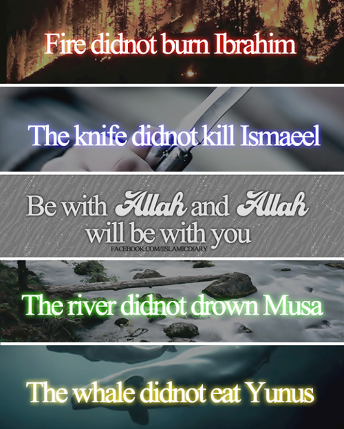 rosecems:</p><p>Be with Allah, and Allah will be with you, Insha Allah.<br />