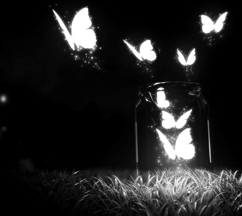 YOU CAN'T BOTTLE UP NATURE.<br /> NATURE NEEDS TO BE FREE.<br /> FLY AWAY PRETTY BUTTERFLIES.