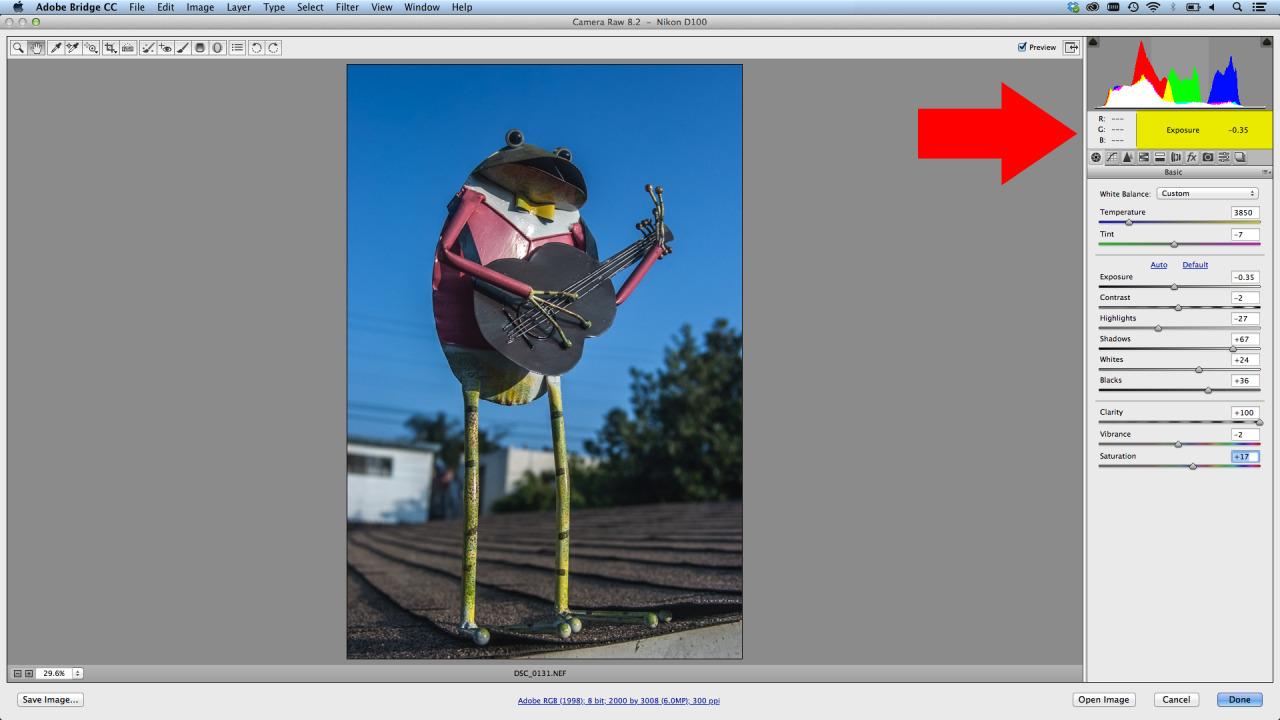 New Feature Adobe Camera RAW Histogram