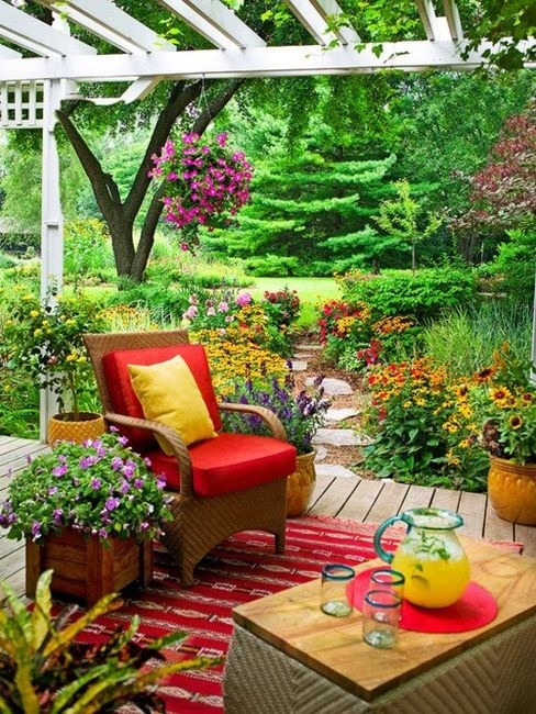 flowersgardenlove:backyard delight
