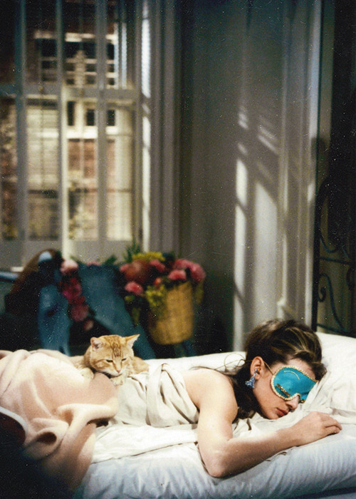 Breakfast At Tiffanys Quotes Wallpaper Cat Audrey Hepburn Old Hollywood Breakfast At Tiffany S