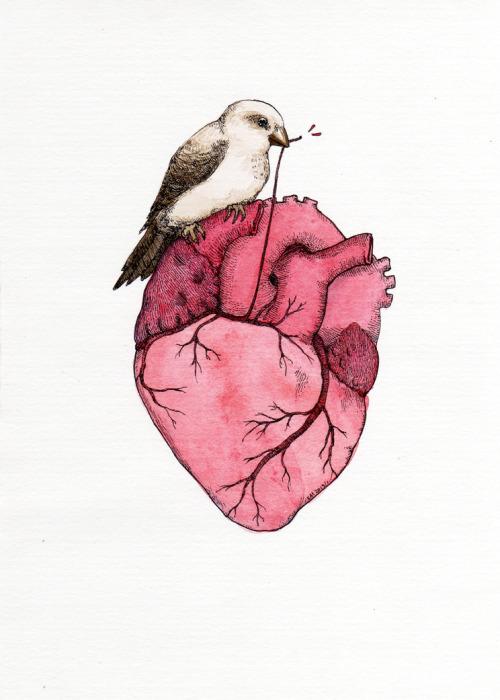 Bilderesultat for heart tumblr photo