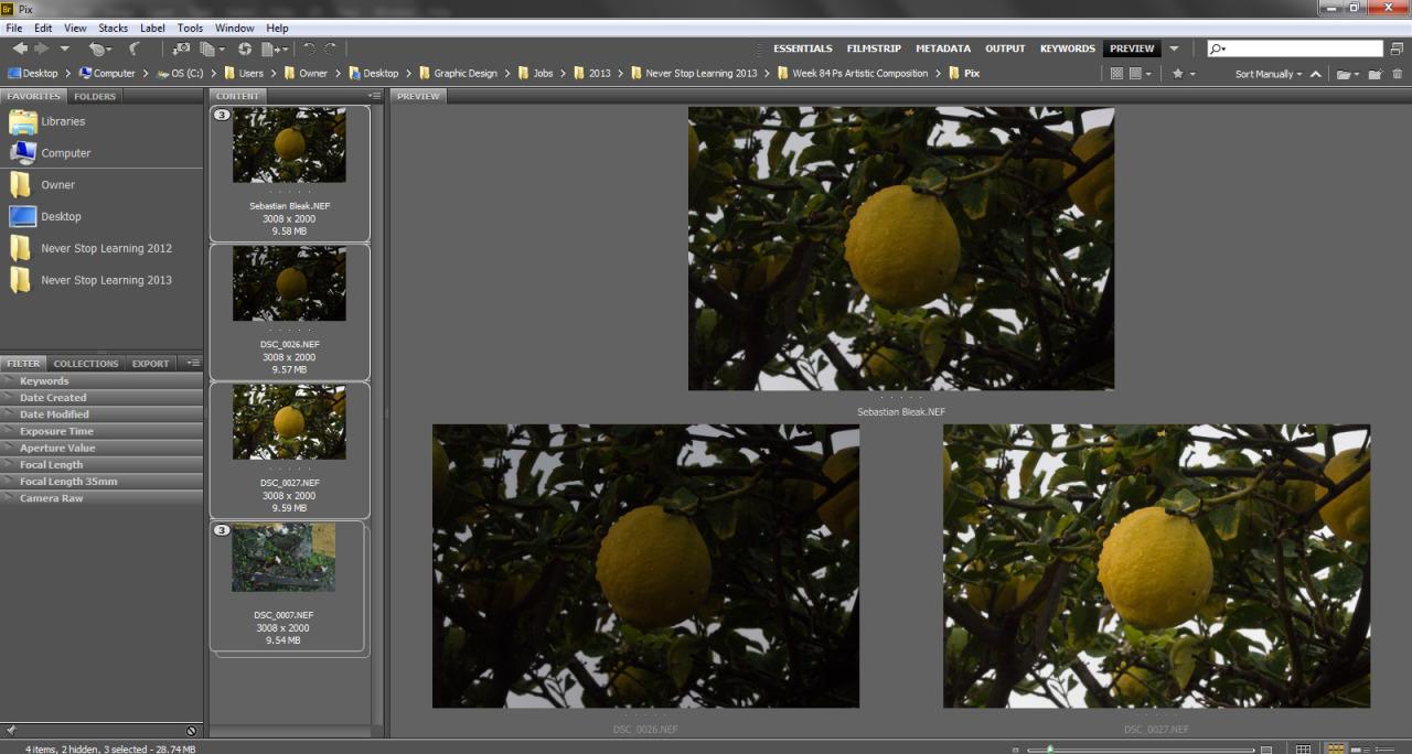 Adobe Bridge CS6 HDR