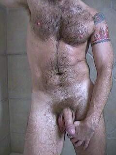 hairy chubby bear cock